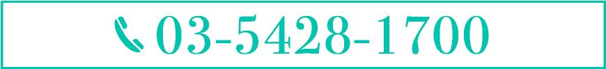 03-5428-1700